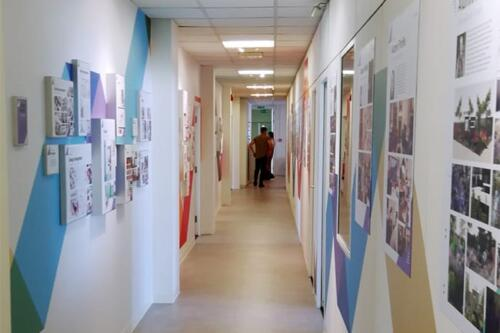 education corridor wall decals